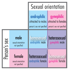 sexual orientation essay