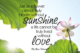Flower Love Quotes
