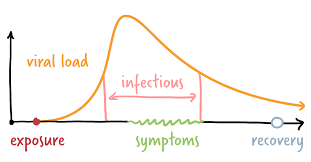 charting a coronavirus infection the