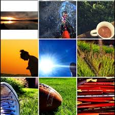 elements and principles of photography elements principles of design on instagram kellene hilliard