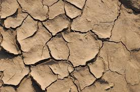 drought land so long waterless - realistic.photos | Global warming,  Drought, Dramatic effect