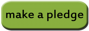 Image result for pledge it button