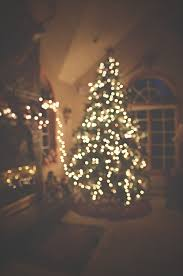 christmas tree tumblr photography. Beautiful Christmas With Christmas Tree Tumblr Photography A