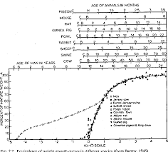 Pig Feeding Chart By Age Pdf Pdf Growth And Carcass Composition From Birth To Maturity