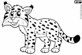 Lynx Lynx Korfbal Pagina 160