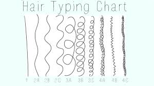 Hair Typing Chart 1 2 3 4 A B C Accurate