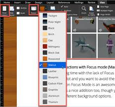 remove distractions on word 2019 with focus mode mac only