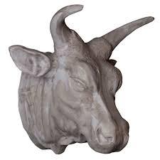 фото голова быка