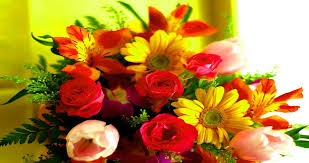flowers delivery in noida gifts and cakes anytime at anywhere in the country