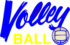 tampa bay softball leagues and tour nts indoor volleyball indoor volleyball
