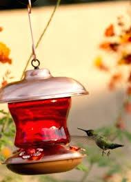 red glass hummingbird feeder bottle copper