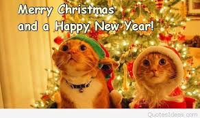 cute merry christmas and happy new year 2015. Fine Christmas In Cute Merry Christmas And Happy New Year 2015