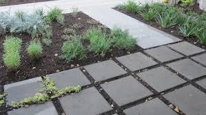 modern no lawn front yard
