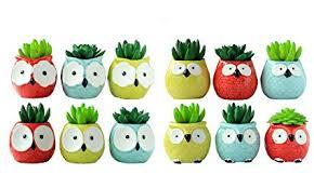 12 PCS Set Cute Cartoon Animal Owl Shaped ... - Amazon.com