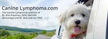Canine Lymphoma Life Expectancy Caninelymphoma Com