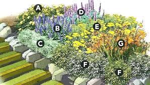 flower garden plans layout flower garden plans layout perennial garden layout ideas perennial flower garden plan