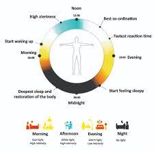 Human Centric Lighting Design The Benefits Of Human Centric Lighting Ee Publishers