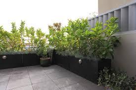 Small Picture Garden Pots Outdoor Pots Designer Pots The Balcony Garden