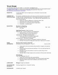Fast Food Cashier Resume - Tier.brianhenry.co