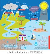 Rain Cycle Chart
