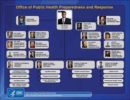 Cdc Organizational Chart Phpr Org Chart Blogs Cdc