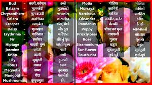 flowers flowers name fuloke naam