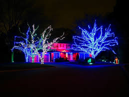 christmas lights outdoor trees warisan lighting. Christmas Lights Outdoor Led Warisan Lighting Trees N