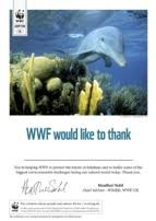adopt a dolphin certificate