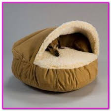 tj maxx dog beds. Interesting Maxx Trusty Pup Dog Bed Small U2013 Shop Target For TrustyPup Beds You Will Love  At To Tj Maxx O