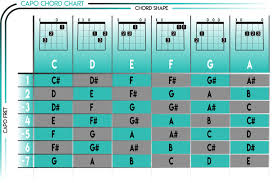 Described Chord Capo Transposition Chart Guitar Transpose