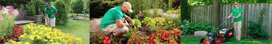 lawn maintenance services in canada