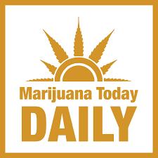 MJToday Media