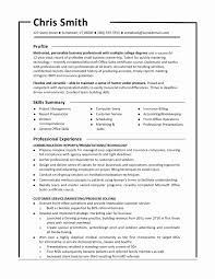 Combination Resume Examples Best Of Functional Resumes Templates