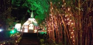 Where Can I Buy Fairy Lights In Nairobi Fairy Lights Outdoors Buddhist Temple Nairobi On Vesak 2019