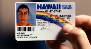 Hawaiian Tiki Central License Drivers -- 1987 Circa