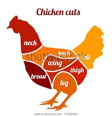 Chicken Cuts Vector Illustration Chicken Meat Animals