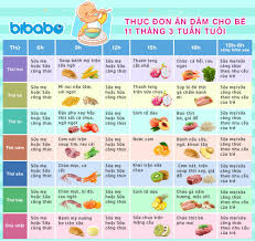 Thực đơn ăn dặm cho bé 11 tháng – Tuần 3 (Dành cho bé ăn dặm tích cực –  Ngày ăn 1-2 bữa) - bibabo.vn