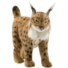 Леопарды, <b>рыси</b> и барсы - купить <b>мягкие игрушки</b> в интернет ...