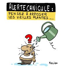 """Résultat de recherche d'images pour """"canicule juin 2019"""""""