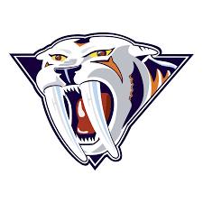 Nashville Predators Logo PNG Transparent & SVG Vector - Freebie Supply