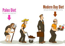 Image result for paleo diet