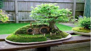 Small Picture Fairy Garden Ideas Landscaping Designs YouTube
