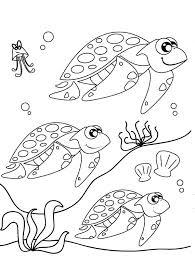 Cute Sea Turtle Coloring Pages Bltidm