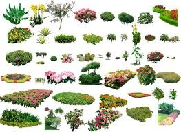 Small Picture photoshop landscape design planting Google Search Photoshop