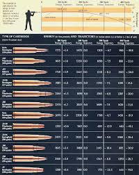 Rifle Trajectory Chart Rifle Ballistics Chart Bullet Drop Bedowntowndaytona Com