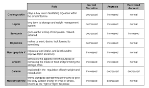 Neuroendocrine System Changes Anorexia Vs Normal