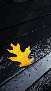 Rain Wallpaper For Mobile - 1080x1920 ...
