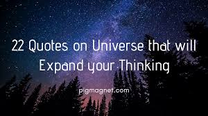 22 Quotes On Universe That Will Expand Your Thinking Pig Magnet