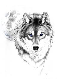 Wolf Tattoo Tumblr Love This Wolf And Moon Tattoo Tetování