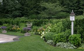 Small Picture Myths of the Perennial Garden Debunked Rock Spring Design Group LLC